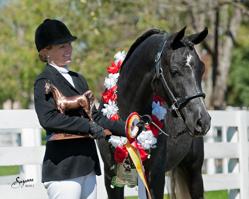 2011 Sport Horse Nationals - Maska C with owner Megan Frantz
